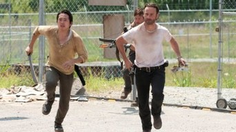 ver The Walking Dead Temporada 3×04