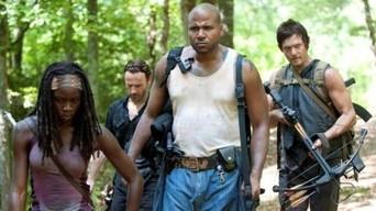 ver The Walking Dead Temporada 3×07