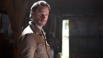 ver The Walking Dead Temporada 3×13