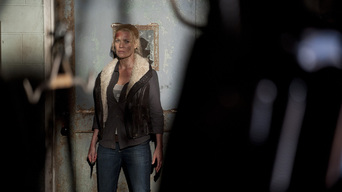 ver The Walking Dead Temporada 3×14