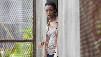 ver The Walking Dead Temporada 4×03