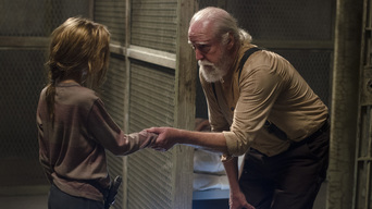 ver The Walking Dead Temporada 4×05