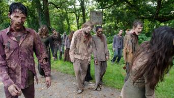 ver The Walking Dead Temporada 4×06