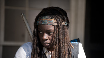 ver The Walking Dead Temporada 4×11