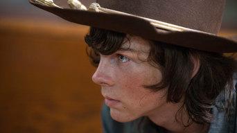 ver The Walking Dead Temporada 5×08