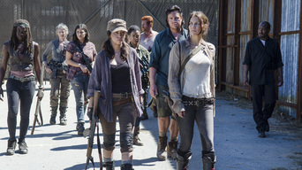 ver The Walking Dead Temporada 5×12