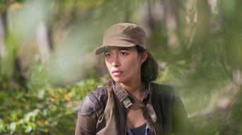 ver The Walking Dead Temporada 6×15
