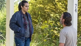ver The Walking Dead Temporada 7×12
