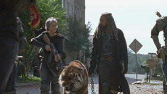 ver The Walking Dead Temporada 7×16