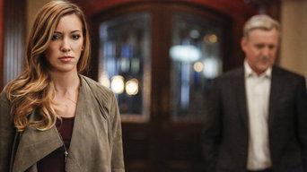 ver Arrow Temporada 5×08