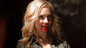 ver The Vampire Diaries Temporada 2×05